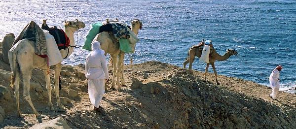 Pět knih poutníka Mojžíše pohledem cestovatele aneb Tóra jako nejstarší cestopis odhalující smysl Cesty