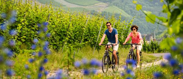 Procestujte sousední Německo na dvou kolech aneb několik tipů na místní cykloturistiku