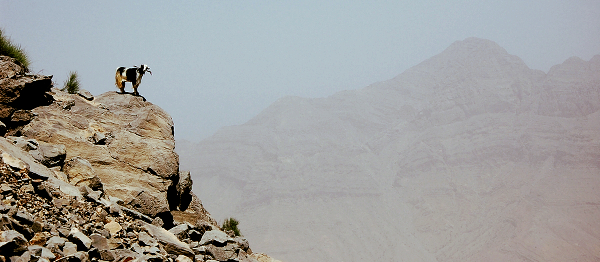 Jak na vlastní pěst zdolat nejvyšší horu Emirátů Džabal Bil Ajs v pouštním pohoří Al-Hadžar